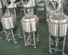 50L Homebrew Brewing System , Brewhouse Beer Brewing Equipment Fermentation Tank